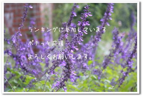 ria 070_1