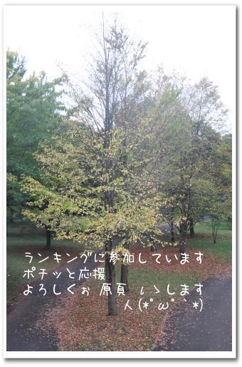 ria 079_1