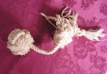 ロープのおもちゃP1010004