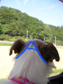 富士山okP1010094