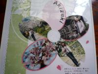 2003.3桜1