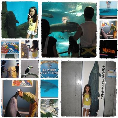須磨海浜水族館 2