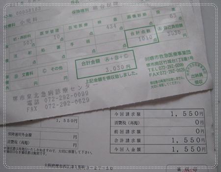 IMG_0516.jpg