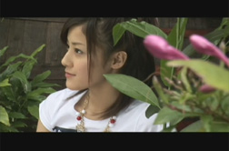 miyabi277_dvd