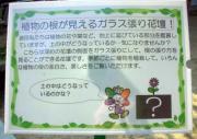 花の文化園1