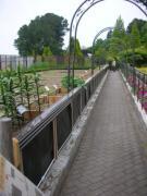花の文化園7