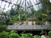 花の文化園6