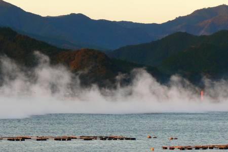 久礼湾の写真 朝霧