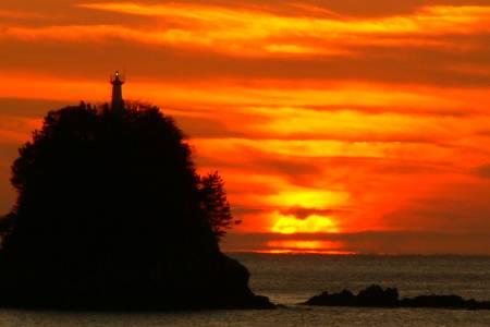 久礼湾 日の出の写真