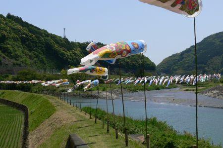 伊与木川土手沿いに泳ぐ不織布で作ったこいのぼり。