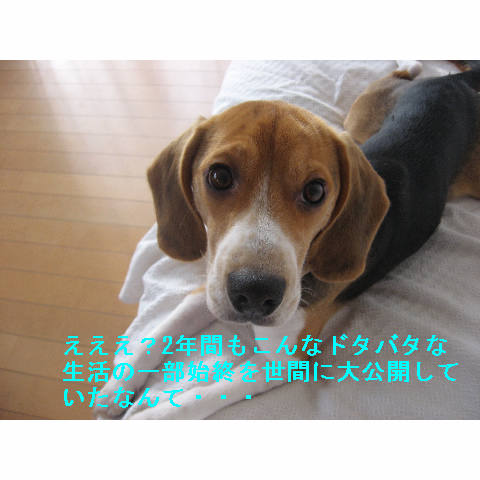daikoukai.jpg