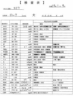 2006年1月検査表