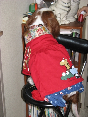 節分に赤い犬服♪バックから