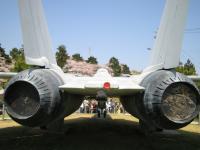 F14 BACK