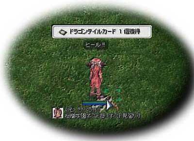 2007-11-19-01.jpg