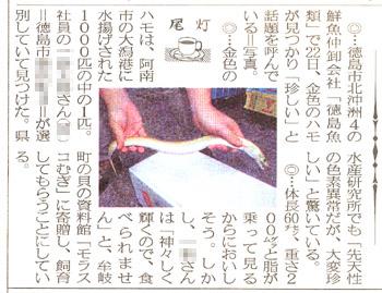hamo_news.jpg