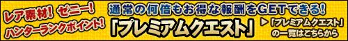 bn_premium_quest.jpg