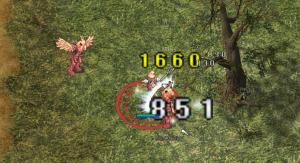 20071102155842.jpg