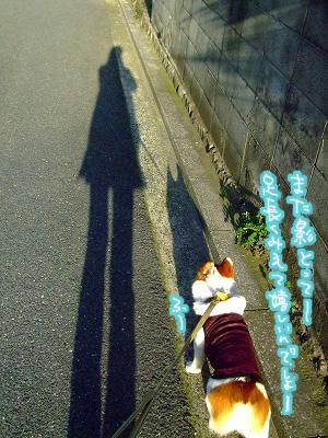 影だと足が長く見えるモンね♪