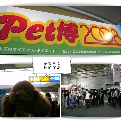 20081012-3.jpg