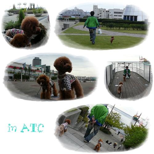 20081012-6.jpg