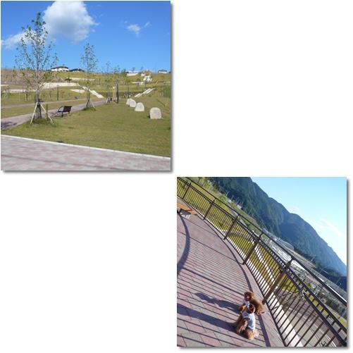 20081015-1.jpg