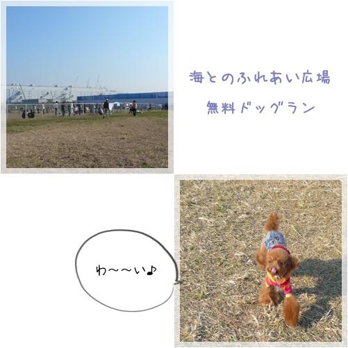 20081115-3.jpg