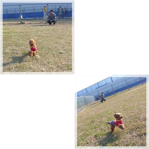 20081115-4.jpg