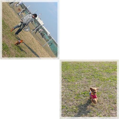 20081115-5.jpg