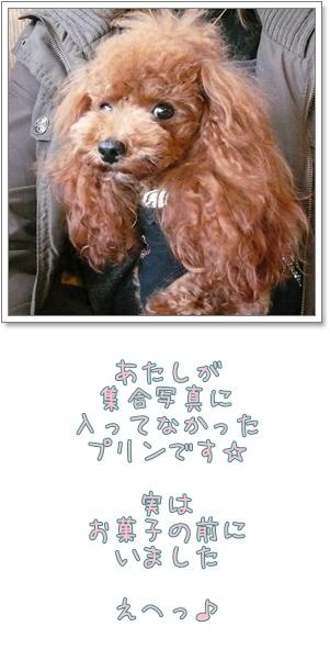 20081121-21.jpg