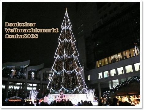 20081213-4.jpg