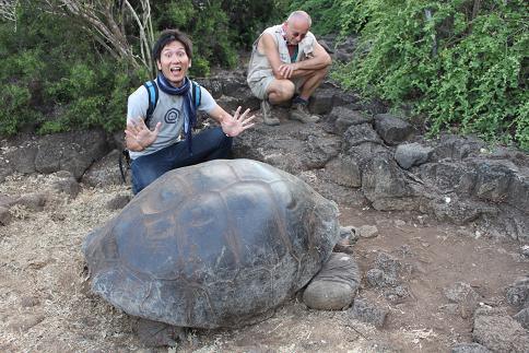 巨大亀さんと