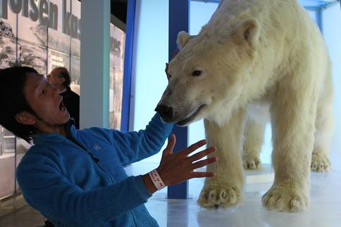 白熊に襲われました