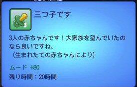 sim3-a21-03.jpg