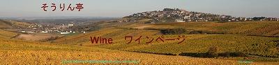 秋のサンセールの丘