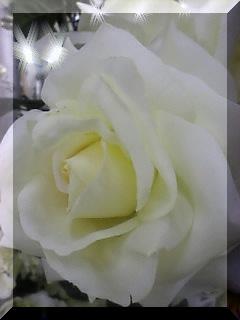 20090330194037