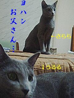 2007021701