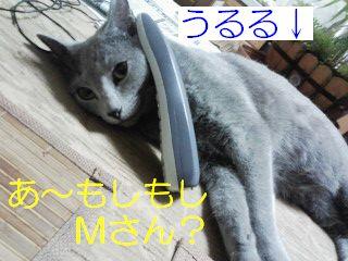 2007040704
