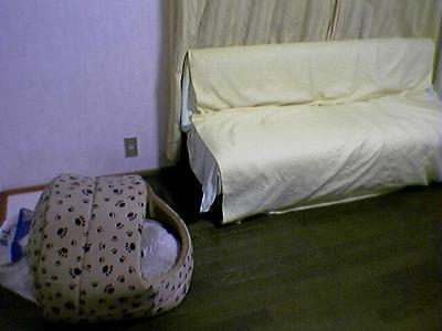 2006112501
