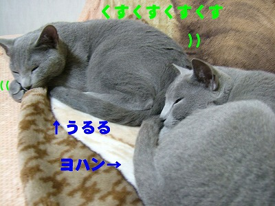 2007012901