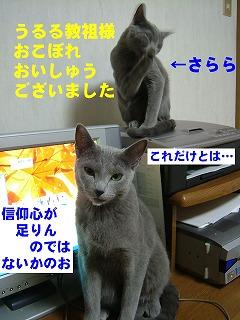 2007011404