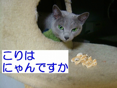 2008012406