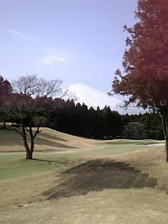 golf_M.jpg