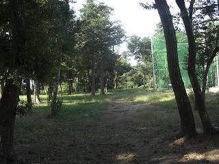 2008.10.15 3