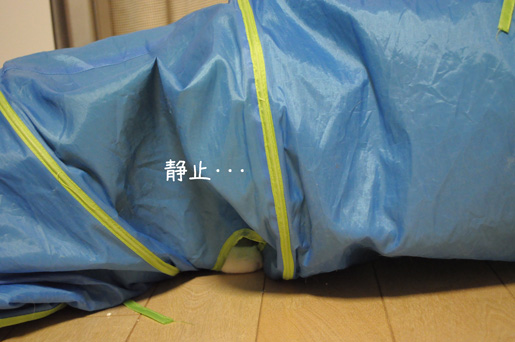 DSC_0157_20091216225711.jpg