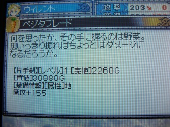 CIMG9113.jpg