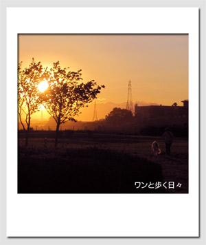 0507_5.jpg