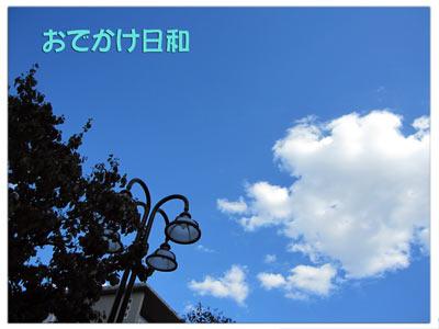1011_1.jpg