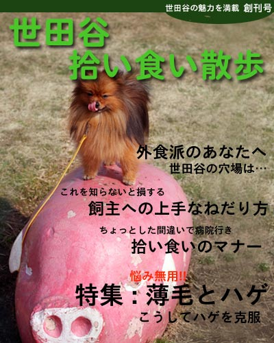 book_大吉