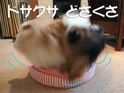 914_4.jpg